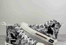 giày dior